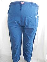 Брюки варенка супер  батал (синий)/ купить брюки 001