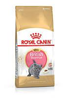 Royal Canin Kitten British Shorthair - корм для британских короткошерстных котят от 4 до 12 месяцев 2 кг, фото 1
