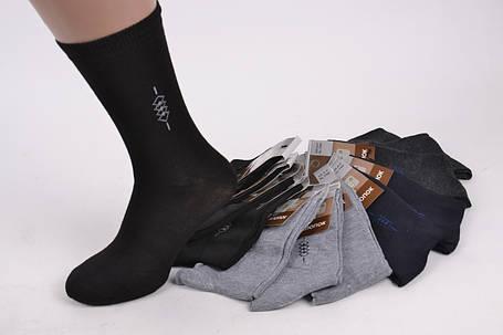 "Мужские носки ""JuJube"" хлопок (F506-5)   12 пар, фото 2"