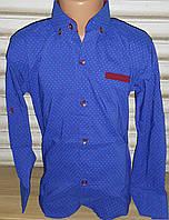Стильная стрейчевая рубашка для мальчика 6-14 лет (ярко синия 01) (пр. Турция)