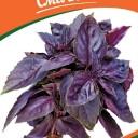 Насіння базиліку фіолетового, 0,5 г