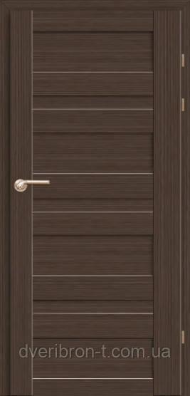 Двери Брама Модель 19.1