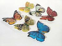 Бабочки декоративные на липучке 6шт большие
