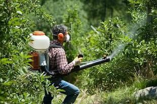 Как выбрать садовый мотоопрыскиватель для эффективной работы в саду