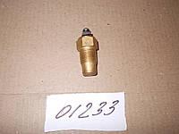 Датчик температуры воды (12-24V), ТМ-100