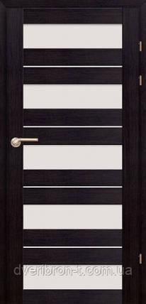 Двери Брама Модель 19.5, фото 2