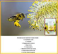 Форевер Пчелиная Пыльца, США, Forever Bee Pollen, 100 табл.