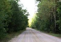 Проведено собрание «Эффективное строительство лесных дорог»