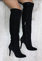Сапоги ботфорты замшевые демисезонные на каблуке чёрные