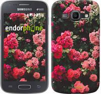 "Чехол на Samsung Galaxy Ace 3 Duos s7272 Куст с розами ""2729c-33"""