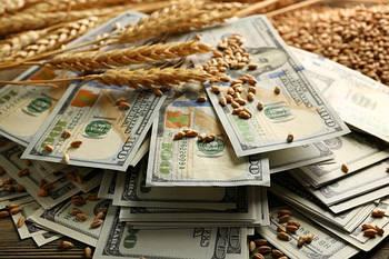 Отмена спецрежима НДС для аграриев: эксперт рассказал, кому это выгодно