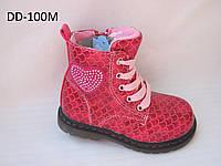 Демисезонные ботинки для девочки  24 р