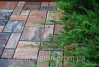 Тротуарная плитка Пассион, фото 1
