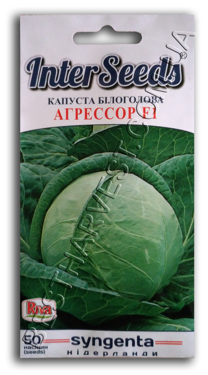 Семена капусты «Агрессор F1» 50 семян