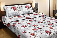 Красивое хлопковое односпальное постельное белье Lotus LOVE LETTER красный LT12