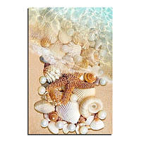 """Картина для рисования камнями Diamond painting Алмазная вышивка """"Морские ракушки в воде"""", фото 1"""