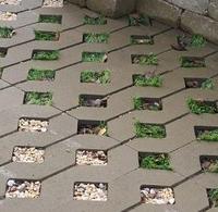 Тротуарная плитка Золотой Мандарин Парковочная решетка 500х500х80 мм горчичный на сером цементе
