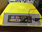 Инкубатор бытовой HHD 96 автомат +12 в резервное питание, фото 2