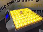Инкубатор бытовой HHD 56 автомат + встроенный овоскоп !, фото 3
