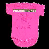 Детский боди-футболка р. 74 ткань КУЛИР 100% тонкий хлопок ТМ Маленьке сонечко 3407 Малиновый