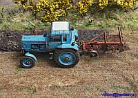 Диорама миниатюра Трактор в поле 1:43