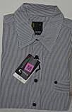 Приталенная рубашка CLIMMER (размеры M,L,XL,XXL,XXXL), фото 2