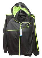 Костюм мужской спортивный 1615 Adidas с капюшоном (деми)