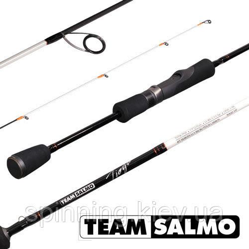 Спінінги Team Salmo TIOGA