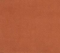 Мебельная ткань велюр Versus 1253  производитель  Eden (Эден)