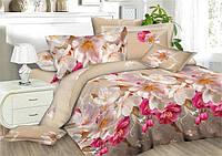 Двуспальный набор постельного белья Ранфорс №257