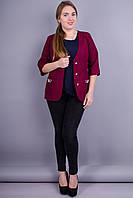Карина. Стильный пиджак женский. Бордо., фото 1