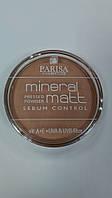 Parisa Cosmetics Mineral Powder (7)