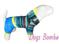 """Дождевик комбинезон для собак """"Кардиограмма"""" с синими штанами"""