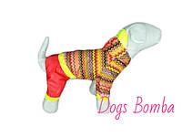 """Дождевик комбинезон для собак """"Кардиограмма"""" с красными штанами"""