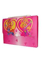 "Портфель-коробка с цв. рис.,  А4, ""FAIRY CLUB 2"", 550 мкн, 5601, CLASS"