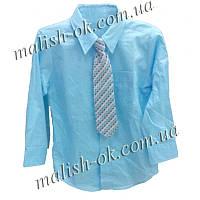 Рубашка с галстуком Ceorge мальчик (29526)