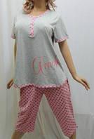 Пижама больших размеров с бриджами, 50-56р-р, Харьков серая в горох