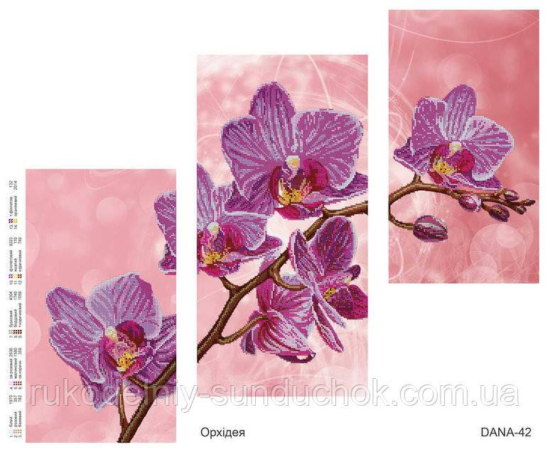 Схема для вышивания бисером  DANA Триптих Орхидея 42