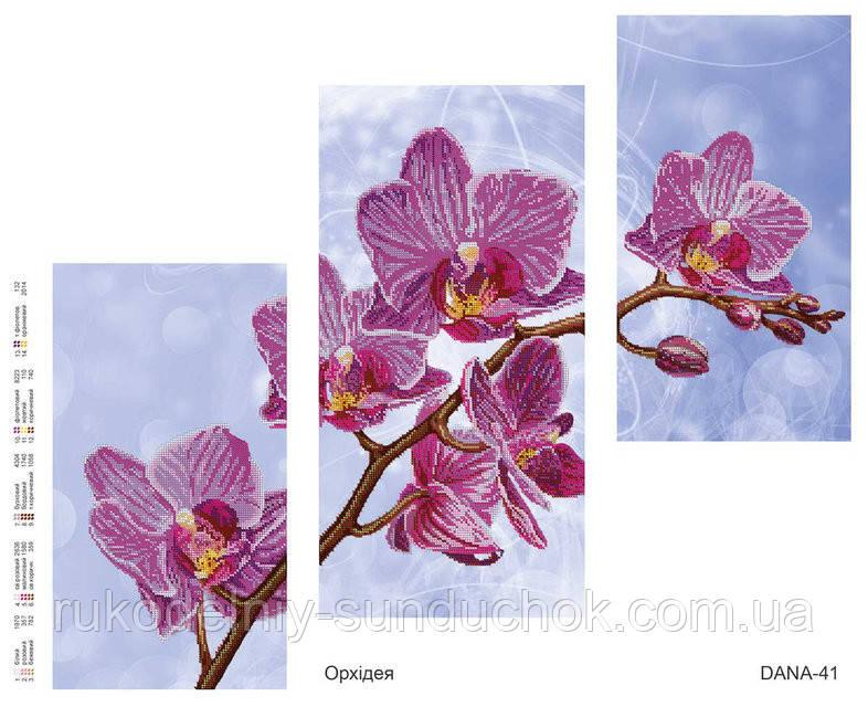 Схема для вышивания бисером  DANA Триптих Орхидея 41