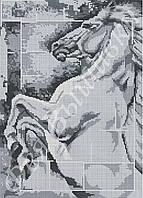 """Схема для вышивки бисером на габардине """"Победный конь"""""""