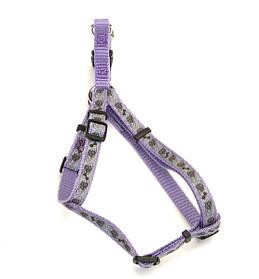 Coastal Lazer свето-отражающая шлея для собак, лапа кость фиолетовый, 1см, 31-48см