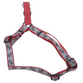 Coastal Lazer свето-отражающая шлея для собак, красный с косточками, 1см, 31-48см