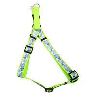 Coastal Lazer свето-отражающая шлея для собак, клевер, 1см, 31-48см