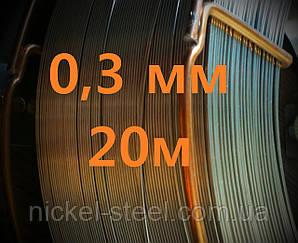 Проволока нержавеющая 0,3 мм 20 метров