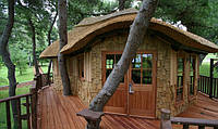 Дитячий будинок на дереві