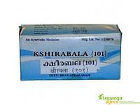 Кширабала 101 масло 10 мл., Ksheerabala 101 Arya Vaidya Sala, омоложение кожи, лечение суставов и нервной системы, Аюрведа Здесь