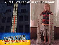 Термометр  фасадный  уличный 75 х 10 см.