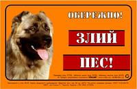 "Табличка Collar ""ОБЕРЕЖНО, ЗЛИЙ  ПЕС"" кавказская овчарка, полноцвет"