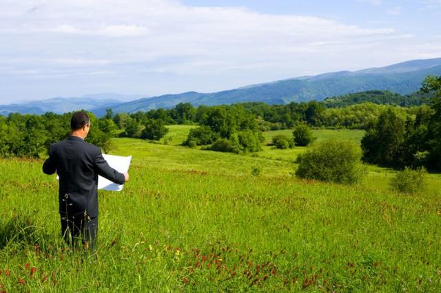 Рынок аренды земли: появились новые данные