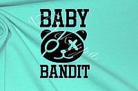 Наклейка на ткань ТТ-263 Baby Bandit